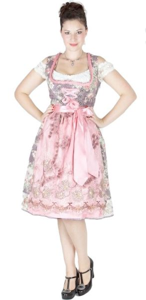 12488 Gwandlalm Dirndl Deining 65er taupe rosa